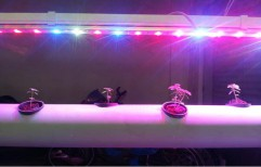 LED Grow Light by SIKCO Engineering Services Private Limited