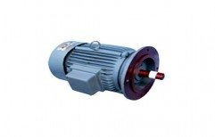Flange Mount Motor by National Equipment Company