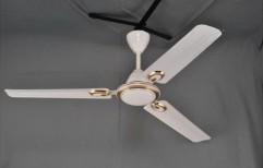 Solar DC Blade Ceiling Fan by Solaris Energy