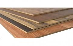 Melamine Faced Plywood by KK Enterprises
