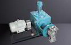 Lime Dosing Pumps by Minimax Pumps Private Limited