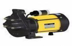 Neon Series Centrifugal Pump by Gupta Electricals