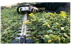 Electric Hedge Trimmers by Raman Machinery Stores