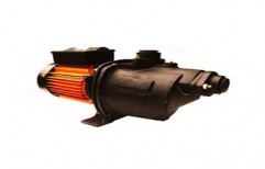 Shallow Well Jet Self Priming Pump by Mangla Engineering Limited