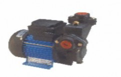 Tiny Domestic Pump by Pareek Power & Pumps Private Limited