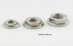 Titanium Nuts by Apexia Metal