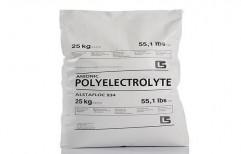 Anionic Polyelectrolyte Powder by Laxmi Enterprises