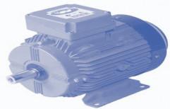 High Efficiency Aluminium Motor/LT Motors by Crompton Greaves Limited