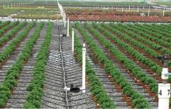 Agriculture Sprinkler Irrigation System by Tatiwar Industries