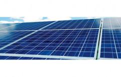 Poly Crystalline Solar Panel by Sunrenew Energy