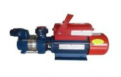 Crompton Water Pump by Ankit Enterprises