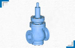 Pressure Relief Valve by Mackwell Pumps & Controls