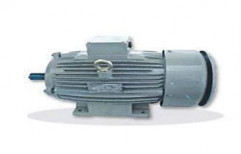 Crompton Three Phase Induction Motor by Sungrace Electro Systems