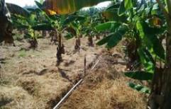 Drip Irrigation System by S. P. Enterprises