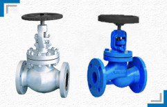 Flanged End Globe Valve by Mackwell Pumps & Controls