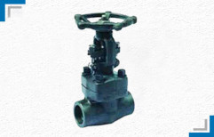 Forged Steel Globe Valve by Mackwell Pumps & Controls