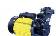 Domestic Monoblock Pump by Tilak Motor Pumps