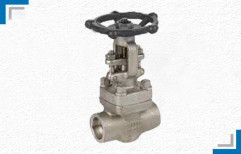 Socket Weld Gate Valve by Mackwell Pumps & Controls