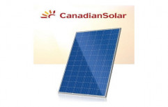 Canadian Solar Panel by Cohort Overseas Private Limited