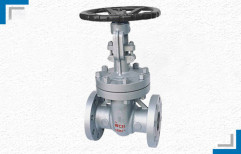 CI Gate Valve by Mackwell Pumps & Controls