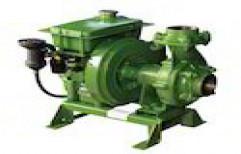Kirloskar Manual Diesel Engine Pumps, 3 HP, Air Cooled