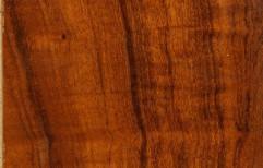 Wood Laminates by Jawala Parshad & Co. (P) Ltd