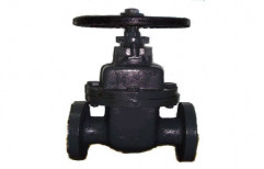 CI Gate Valve by Gopi Pipe House