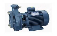 Electric Shallow Well Pump by Srri Kandan Engineerings