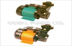 Regenerative Monoblock Self Priming 2880 RPM by Oswal Pumps Limited