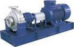 SS Pumps by Wide Wave Technology