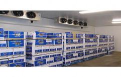 Vegetables & Fruits Cold Storage by Janani Enterprises, Coimbatore