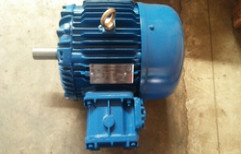 Induction Motor by Naga Pumps Private Limited