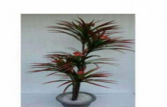 Artificial plants by Sajj Decor
