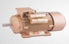 Cast Iron Induction Motor by Hindustan Pumps And Electrical Engineers