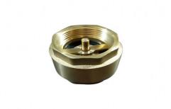Brass Check Non Return Valve by Ishika Sales