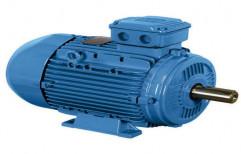 Electric Motor by Jain Pumps Marketing