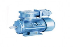 Flame Proof Motors by Petece Enviro Engineers