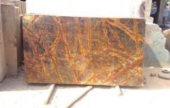 Rainforest Golden Marble by Priyanka Construction