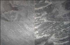 Silver Gray Polish Quartzite by Priyanka Construction