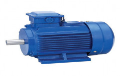 Electric Motor by Bansal Trading Co.