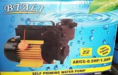 Self Priming Automatic Pump Spap Btali by Water Tek Solution