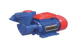 0.5 Hp Crompton Greaves Water Pump, Model Name/Number: Master 2
