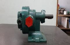 AP Rotary Gear Pump