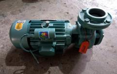 Cast Iron 1-3 Hp Monoblock Pump, Electric, 2800 Rpm