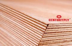 Plywood Laminate Acrilik, Sunmica