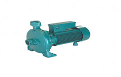 Single Stage Cast Iron Centrifugal Monoblock Pump, Air Cooled, 220 - 240 V