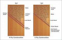 Wood ISI FLUSH DOORS