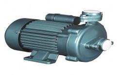 Cast Iron Single Phase Monoblock Pump, 1 Hp, 2800 Rpm