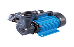 Less Than 15 M Single Phase Monoblock Water Pump, Electric