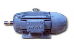 NGEF (New Government Electrical Factory) Industrial Motor